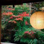 ★ 紅葉の特等席 ~個室の食事会場~ ★